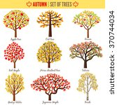 set of autumn trees on white... | Shutterstock .eps vector #370744034