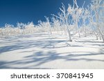 Trees In The Snow  Sakhalin...
