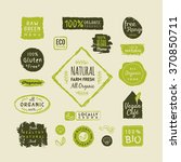 set of organic food labels and... | Shutterstock .eps vector #370850711