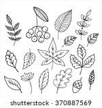 autumn leaves doodles set | Shutterstock .eps vector #370887569