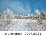 winter landscape. dirt road... | Shutterstock . vector #370915181
