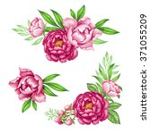Fresh Pink Peony Garland  Rose...