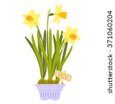 Vector Illustration With Flowe...