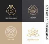 vector abstract badges and... | Shutterstock .eps vector #371061179