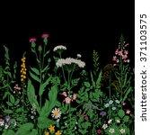 vector seamless floral border.... | Shutterstock .eps vector #371103575