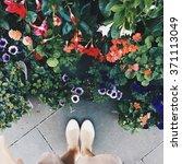 Legs Near Flower