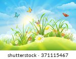 spring summer meadow background ... | Shutterstock .eps vector #371115467