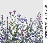 vector seamless floral border.... | Shutterstock .eps vector #371117285