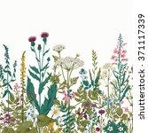 vector seamless floral border.... | Shutterstock .eps vector #371117339