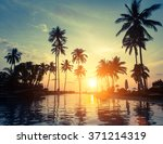 palm trees on a tropical... | Shutterstock . vector #371214319
