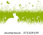green and white easter vector... | Shutterstock .eps vector #371329159