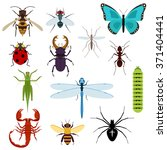 Colorful Top View Insects Icon...