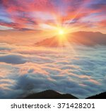at dawn  after a warm rain... | Shutterstock . vector #371428201