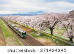 Постер, плакат: Cherry blossoms or Sakura