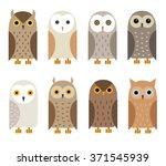 Vector Owl Characters Set.  Ow...