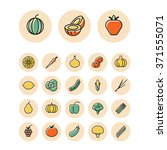 thin line icons for fruits and... | Shutterstock .eps vector #371555071