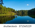 pang oung  reflection of pine... | Shutterstock . vector #371565229