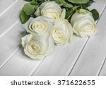 Stock photo white roses on white boards and a dark background 371622655