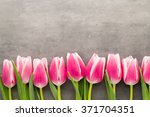 tulips on the grey  background. | Shutterstock . vector #371704351