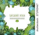cute succulent vector... | Shutterstock .eps vector #371903467