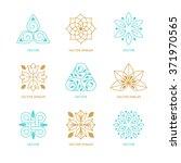 vector set of logo design... | Shutterstock .eps vector #371970565