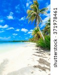 beautiful beach and tropical sea | Shutterstock . vector #371978461
