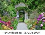 garden in garnish island ...   Shutterstock . vector #372051904