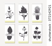 spicy herbs silhouettes...   Shutterstock .eps vector #372142921