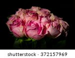 pink roses covered with... | Shutterstock . vector #372157969