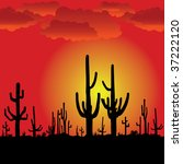 Sunset With Saguaro Cactus....