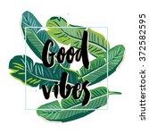 banana palm leaves on the white ... | Shutterstock .eps vector #372582595