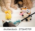 cat breastfeeding the kittens... | Shutterstock . vector #372645709