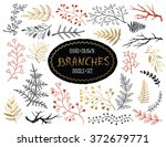 hand drawn branches collection. ... | Shutterstock .eps vector #372679771