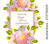 vintage delicate invitation... | Shutterstock .eps vector #372750319