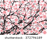 Full Bloom Sakura Tree  Cherry...