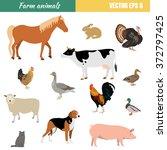 vector set of different flat... | Shutterstock .eps vector #372797425