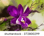 Orchid Flowers   Stock Image