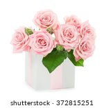Stock photo beautiful bouquet of pink roses in a gift box isolated on white background 372815251