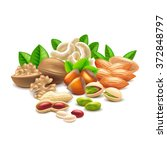 nuts isolated on white photo...   Shutterstock .eps vector #372848797