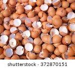 Shell Of An Eggs   Eggs Shell...