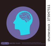 vector icon head with brain. ... | Shutterstock .eps vector #373047511