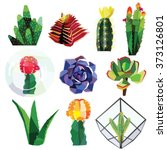 Succulent Cactus Flower Low...