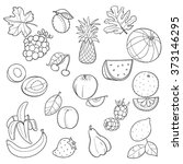 set of group fruits doodle on a ... | Shutterstock .eps vector #373146295