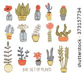 cute hand drawn collection of... | Shutterstock .eps vector #373157734