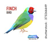 colorful vector low poly finch...   Shutterstock .eps vector #373266649