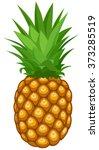 pineapple | Shutterstock .eps vector #373285519