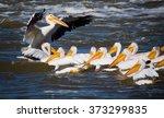 the director | Shutterstock . vector #373299835