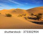 Mesquite Flat Sand Dunes....