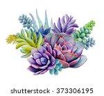 watercolor succulent plants... | Shutterstock . vector #373306195