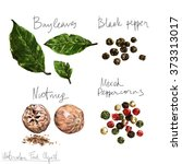 watercolor food clipart   spices | Shutterstock . vector #373313017